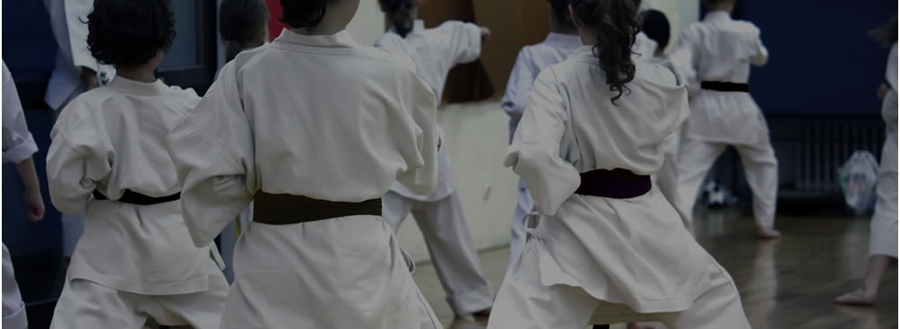 American Olympic Karate